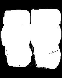 Ritual X2 SR/INT/JR Knee Pads